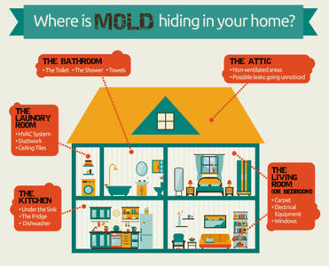 7 Places You Will Find Mold In Your Home!