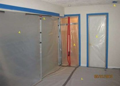 8 Steps To Mold Removal Success!