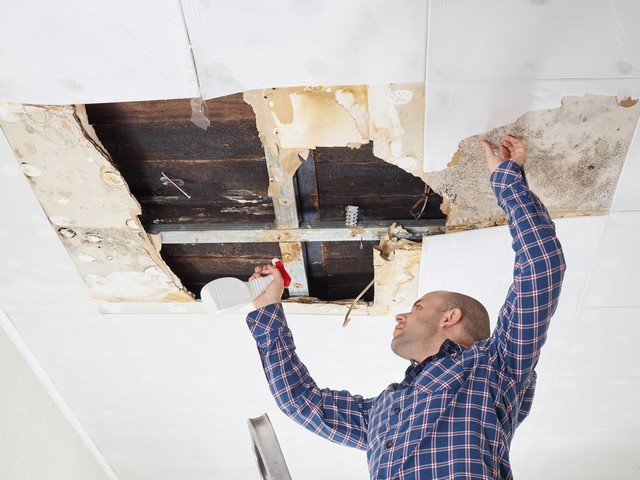 Top 5 Actions You Should Not Take If You Find Mold!