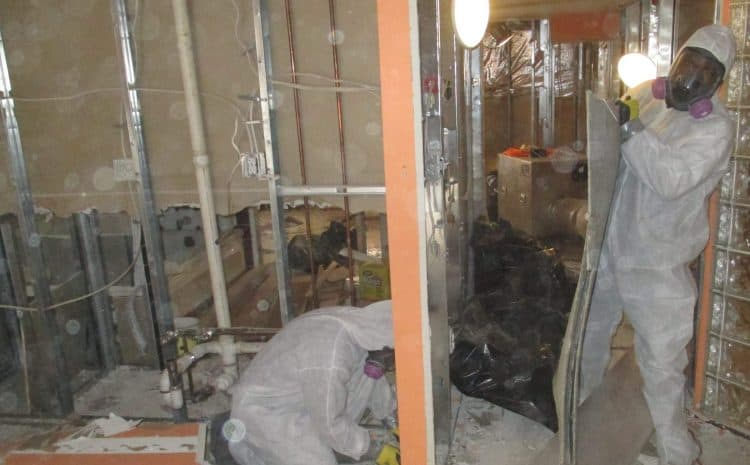 Can You Be Inside Your Home During Mold Remediation
