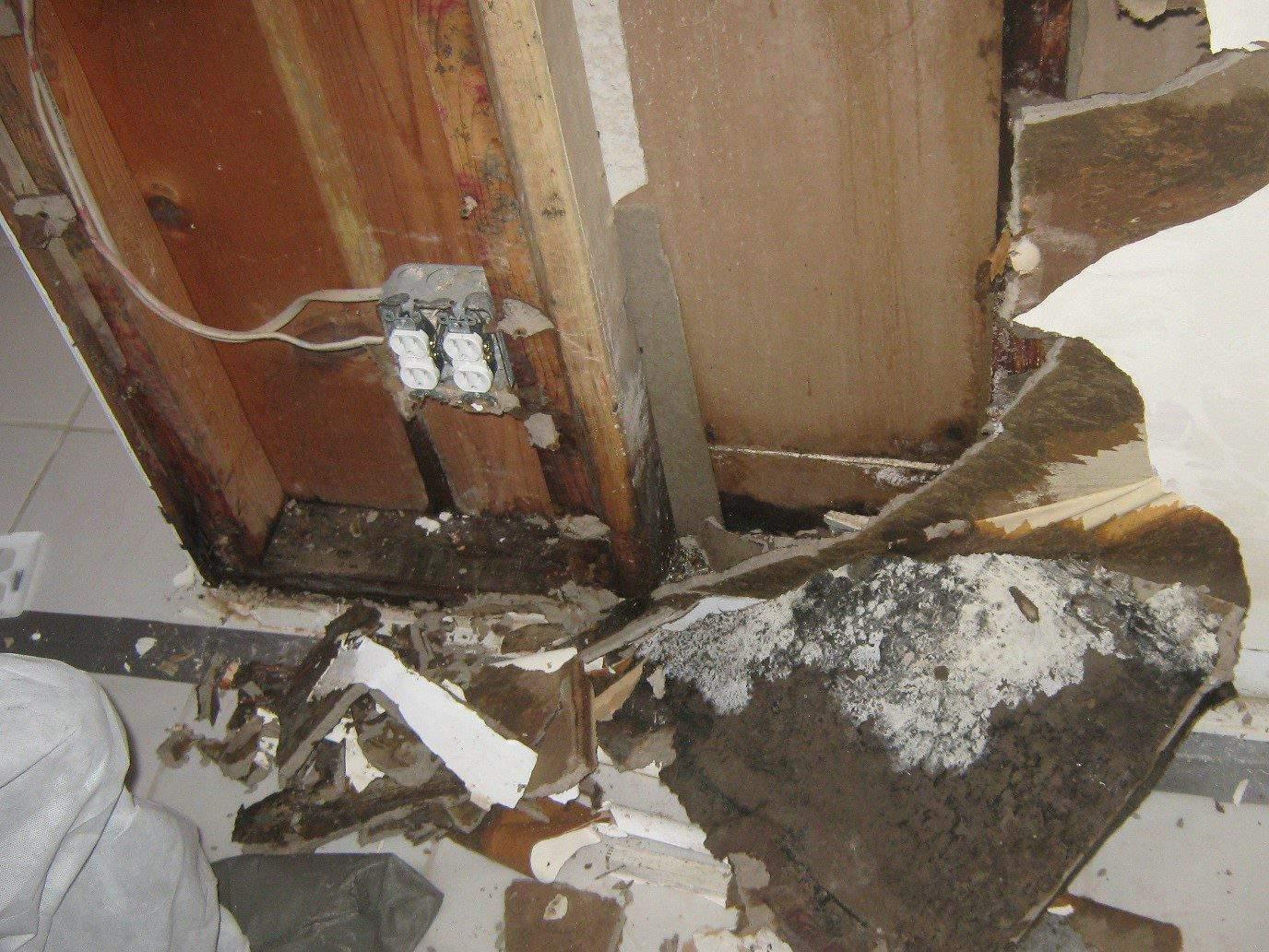 4. Valor Mold Removal - Mold Remediation In Basement- Arlington VA (During)