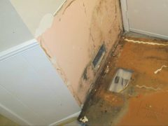 Removed Wall Paneling