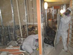 2. Valor Mold Removal - Mold Remediation In Hallway - Fairfax Station VA (During)