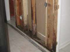 6. Valor Mold Removal - Mold Remediation In Basement- Arlington VA (During)
