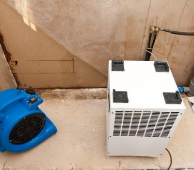 fan drying an area for mold remediation